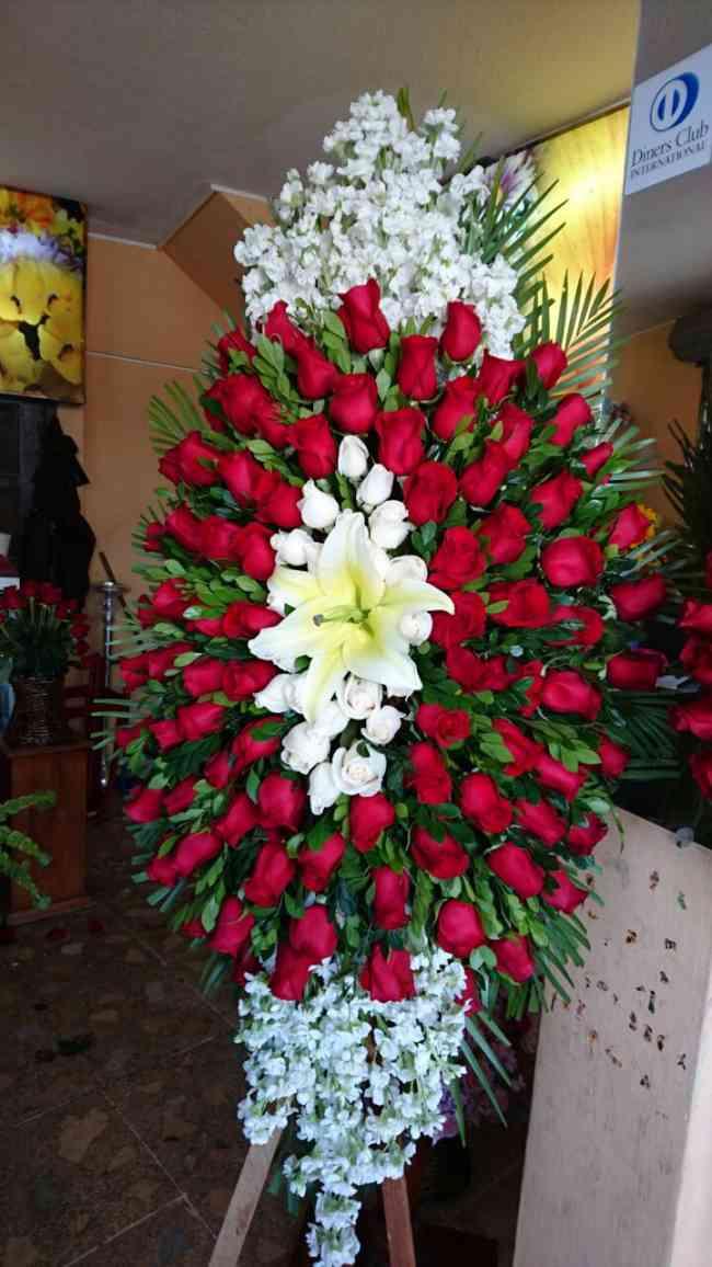Floreria Los Girasoles Ambato La Merced Doplim 875464